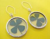 four leaf clover earrings - pressed flower earrings - clover earrings - lucky earrings - flower earrings - bridesmaid earrings