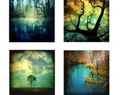 Nature Photography Woodland Forest Trees Set 4 Four Art Prints Teal Dark Blue Gold Home Decor Photography 8x8 Print Pack - Enchanted Forest
