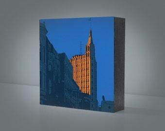 Golden Coyote 6x6 wood panel print--Chicago Wicker Park, Bucktown