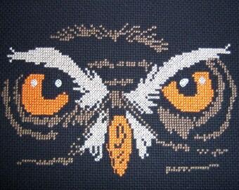 Owl Eyes-LB14294