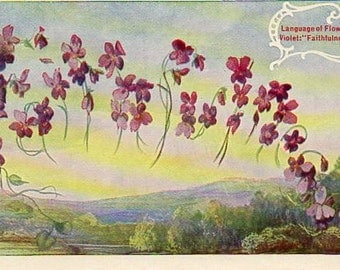 VINTAGE  POSTCARD, Language of Flowers, SALE! collected by junqueTrunque