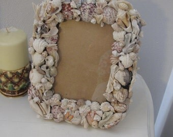 Handshelled Designer Frame with Seashells from the Gulf of Mexico