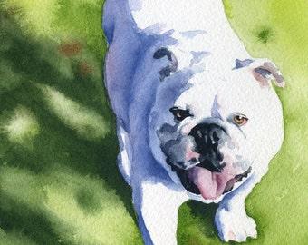 White Bulldog Art Print Signed by Artist DJ Rogers