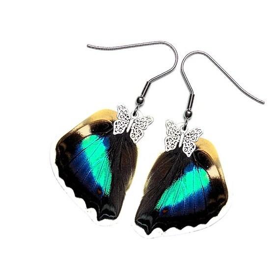 Real Butterfly Wing Earrings  (Doxocopa Cherubina HW - E172)