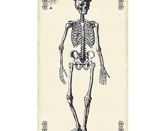 Halloween Fabric Panel Skeleton from the Chillingsworth Collection