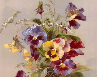 French Spring Pansies Print Catherine Klein Half Yard Long Pansy