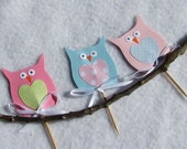 Little Owl Cupcake Toppers Picks Decorations Custom Order for Nicole C.