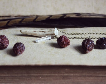 Of Forest and Labyrinth. Genuine Fallen Antler and Quartz Crystal Necklace.