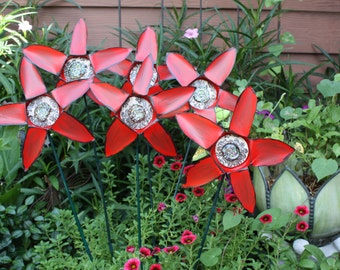 6 Pack can flowers~ Vibrant Reds Heat and drought tolerant