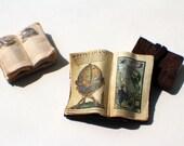 Miniature Open Book --- Atlas
