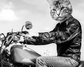 Custom Motorcycle Rider - 1 5x7 - JPG - One Personalized Pet Portrait