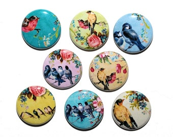 Enchanted Birds - Set of 8 Pinback Buttons Badges 1 inch
