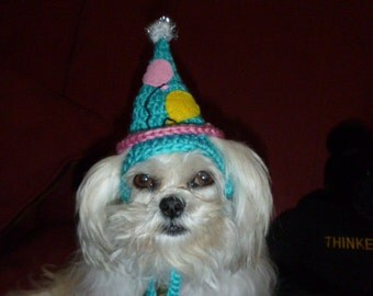 Dog cat BIRTHDAY PARTY hat with Balloons - Humorous - Choose colors - 2 to 20 lb pets - need measurement