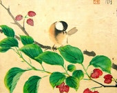 Vintage Bird Print - Japanese Bird Print - Japanese Magazine Cut Out - Vintage Magazine Insert - Magazine Page