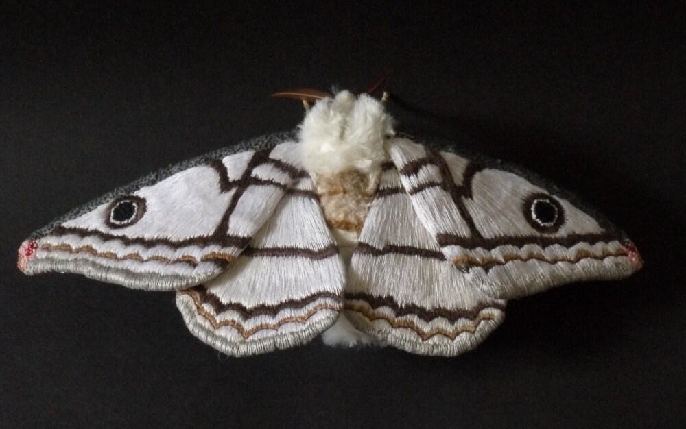 Fabric Sculpture Marbled Emperor Moth Saturniidae Fiber
