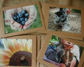 Homestead Notecards - (set of 4)