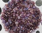 Last One -  Czech Seed Bead Mix