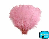 USA Ostrich Feathers, 1/2 lb - LIGHT PINK Ostrich Tail Wholesale Feathers (bulk) : 3581-D
