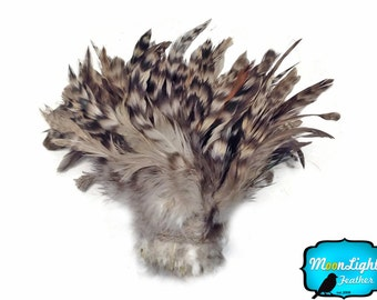 Rooster Feathers, 1 yard - Wholesale GREY Chinchilla Schlappen Strung Rooster Feathers (bulk) : 3612