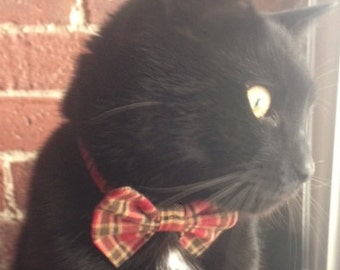 Cat Bow Tie In Cranberry and Green Plaid