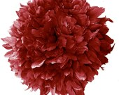 1/2 yard Vogue goose Feathers Fringe - Goose Nagorie in Maroon - Spectacular quality (1/2yard) (014)