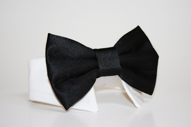 Black Dog Bow Tie And Shirt Collar Black Tie Wedding Dog