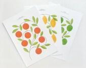 Citrus Print Set