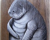 Manatee on Reclaimed Fence Boards Hand Painted Custom Order Only