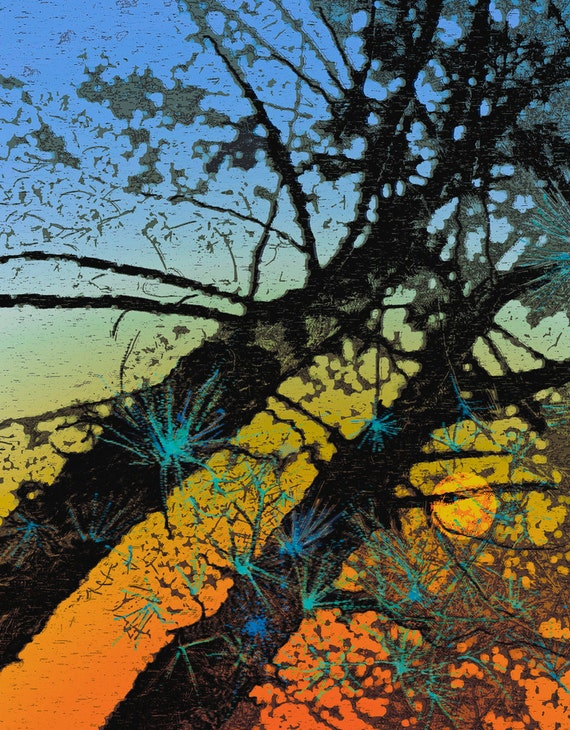 Sunset Pine Trees Print