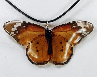 Real Butterfly Necklace - African Monach - Hand Cast Resin