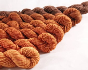 Dyed for YOU Mini Skeins Gradient Ombre DK or Fingering - Pumpkin Pie - 600 yards