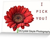 Unique Valentine's Day Greeting Card For Her, Romantic Note, Red Gerbera Daisy, Girlfriend to Boyfriend, Husband to Wife, Envelope Included