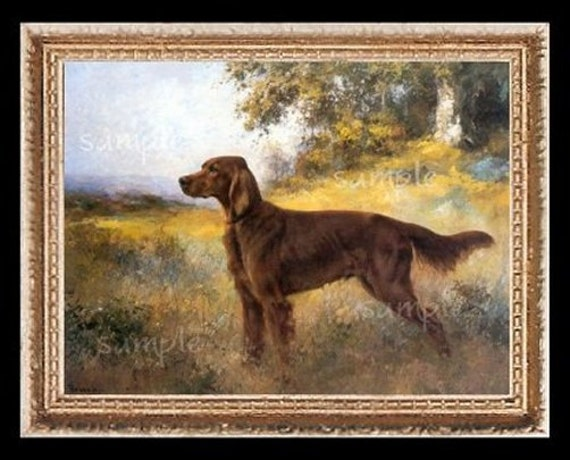 Irish Red Setter Dog Miniature Dollhouse Art Picture 5121