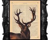 Brown Deer art print - brown Deer - brown stag deer art print on antique book page or music page deer stag art print