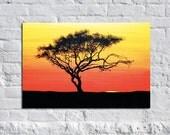 Sliver of Dawn - Original Modern Contemporary Art Africa Tree Painting
