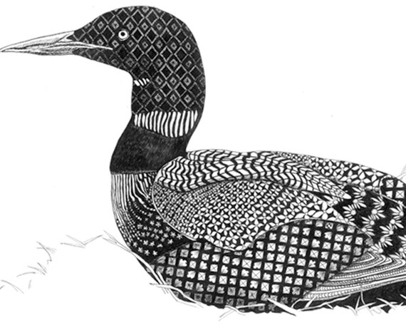Loon Print 8x10 In 11x14 Double Mat Signed By Artist