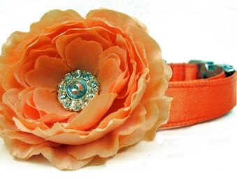 Orange Satin Wedding Dog Collar with Flower Accessory