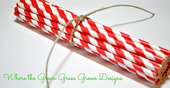 Red and White Paper Party Straws
