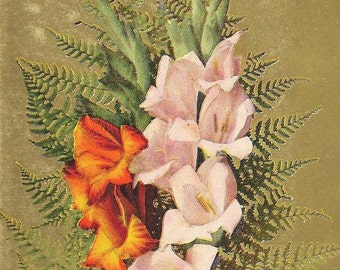 Bouquet of Pink and Orange Gladiolus with Ferns Sincere Wishes Vintage Postcard