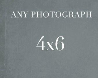 4x6 Photograph, Fine Art Photography, Still Life, Nature, Small Wall Art