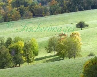 Landscape Rolling Hills Color Photograpy Wall Art Home Decor Digital Download Fine Art Photograpy