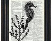 BOGO 1/2 OFF Sale Sea Life Art Print Ocean Art Print Dictionary Art Print Seahorse Art Print Upcycled Wall Art A HHP Original Design 8 x 10