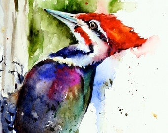 PILEATED WOODPECKER Watercolor Print by Dean Crouser