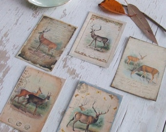 Woodland deer notecards - vintage postcards - postcard - deer - gift cards - scrapbooking