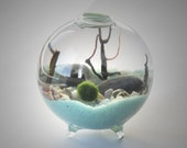 Marimo Terrarium Kit by Midnight Blossom - Miniature footed aquarium with living Japanese moss ball, sand, pebbles, sea shells and sea fan