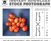"""INSTANT DOWNLOAD - Instagram 25"""" x 25"""" Stock Photo - Bunch of Tomatoes Photo Unlimited Personal and Commercial Use for Blog or Web use"""