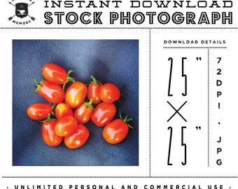 "INSTANT DOWNLOAD - Instagram 25"" x 25"" Stock Photo - Bunch of Tomatoes Photo Unlimited Personal and Commercial Use for Blog or Web use"