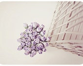 Mulberry paper Large Winter Wisteria Rose Buds flower / pack
