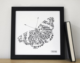 Flutter By Butterfly, The Red Admiral, Butterfly Art, Pen drawn art, Botanical Style, Cottage Chic, Chatty Nora, White, Ivory, Blue, Green