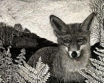 Fox in Bracken Art Print Limited Edition